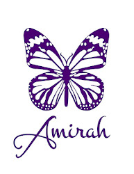 Read more about the article Amirah and the fight to end slavery in New England